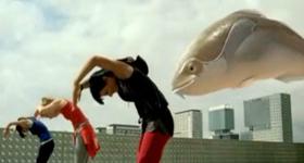 Seven Seas 'Big Fish' TV